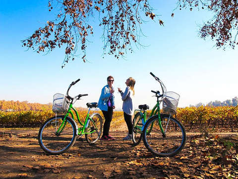Maipo Valley Bicycle and Wine Tour
