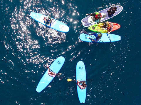 Travesía en Kayak O Stand Up Paddle
