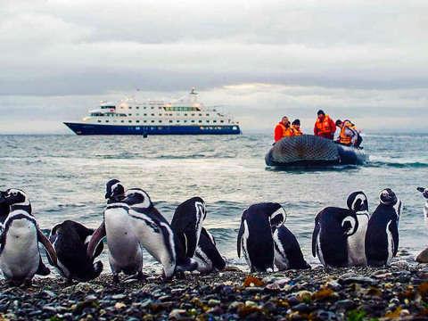 Tour en Bote por la Isla Magdalena desde Punta Arenas